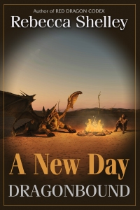 a-new-day-cover-2